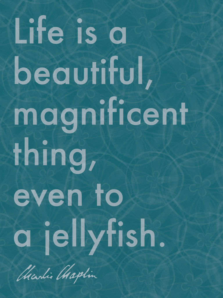 Jellyposter- Site-01